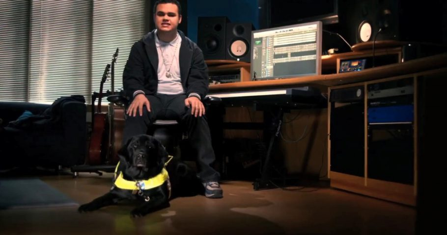 Adbreakanthems November 28 | Guide Dogs For The Blind | Who Knew? tv advert ad music